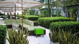 Hospital courtyard