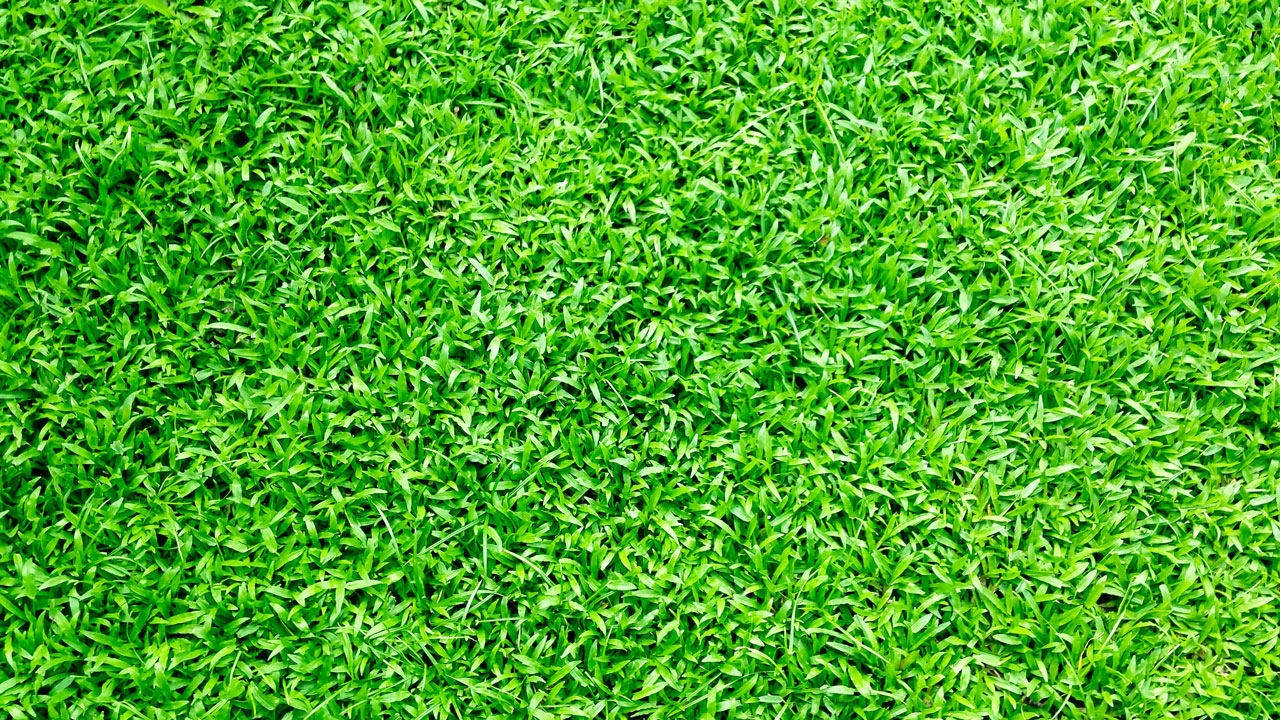 Why-artificial-turf-burns