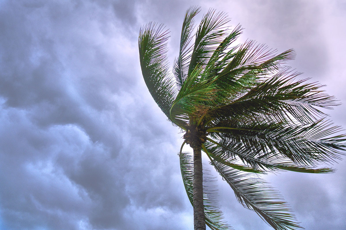 Benefits of security film during a severe storm
