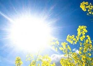 Reduce heat from the sun