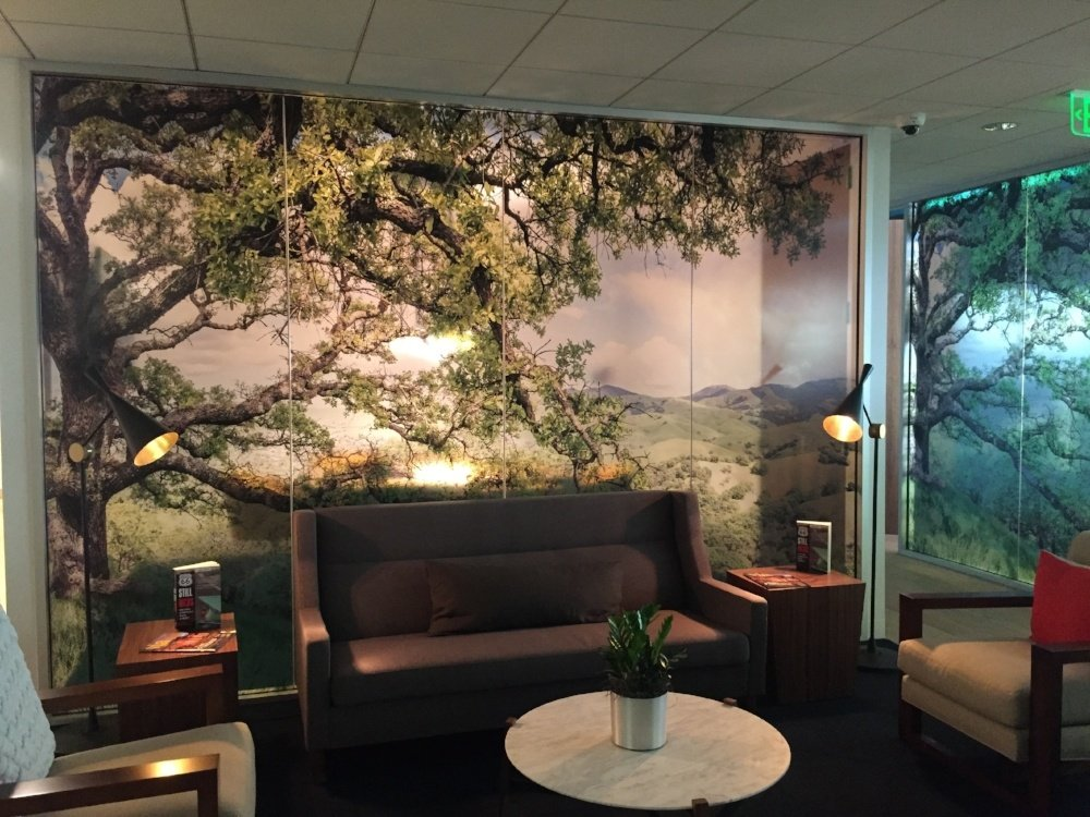 How to Transform Your Space with Office Wall Murals in San Diego